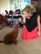 The hostel dog Chewy checking out my henna